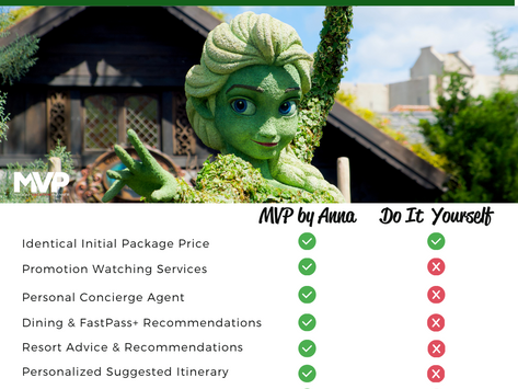 Why You Should Use a Disney Focused Travel Agent