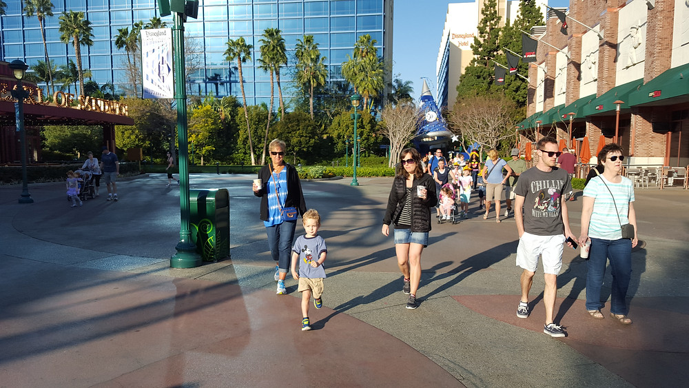 Disneyland Hotel easy walk