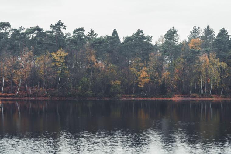 AUTUMN AT THE LAKE  Image 7 of 11 November 2020