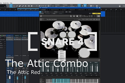 P.D. Premium: The Attic Combo Kit