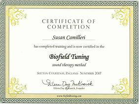 SC BT Certificate 2017.PNG