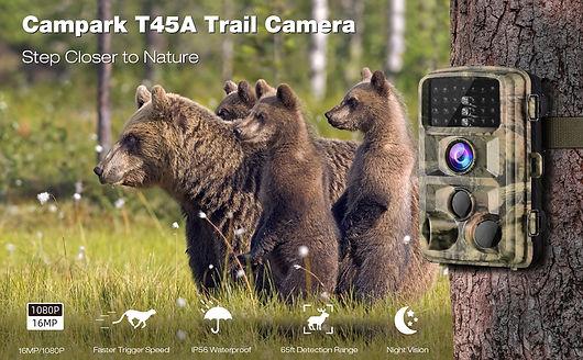 Trail Cam 4.jpg