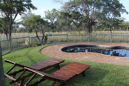 pool new 2.jpg
