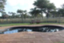pool new 1.jpg