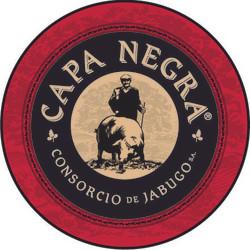 AAFF-Logo Capa Negra_nuevo_sinMARTINBERA