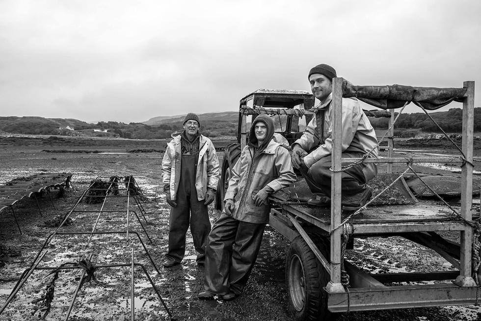 Isle of Mull Oysters Ltd.
