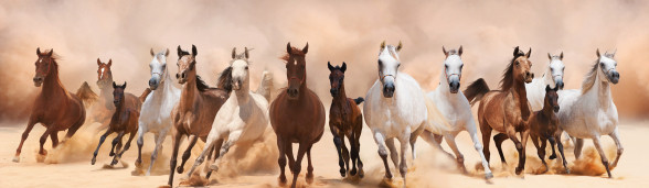 A herd of horses kicking up dust