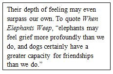 The greater capacity of elephants to grieve and dogs to establish friendships (quote from When Elephants Weep)