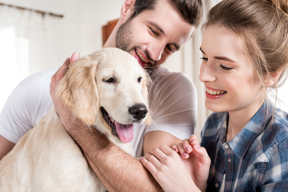 A happy couple with their pet dog
