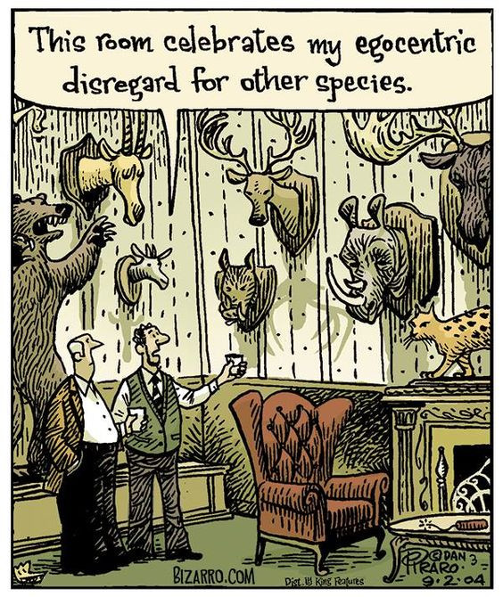A Bizarro cartoon about man's egocentric disregard for other species, such as trophy hunting