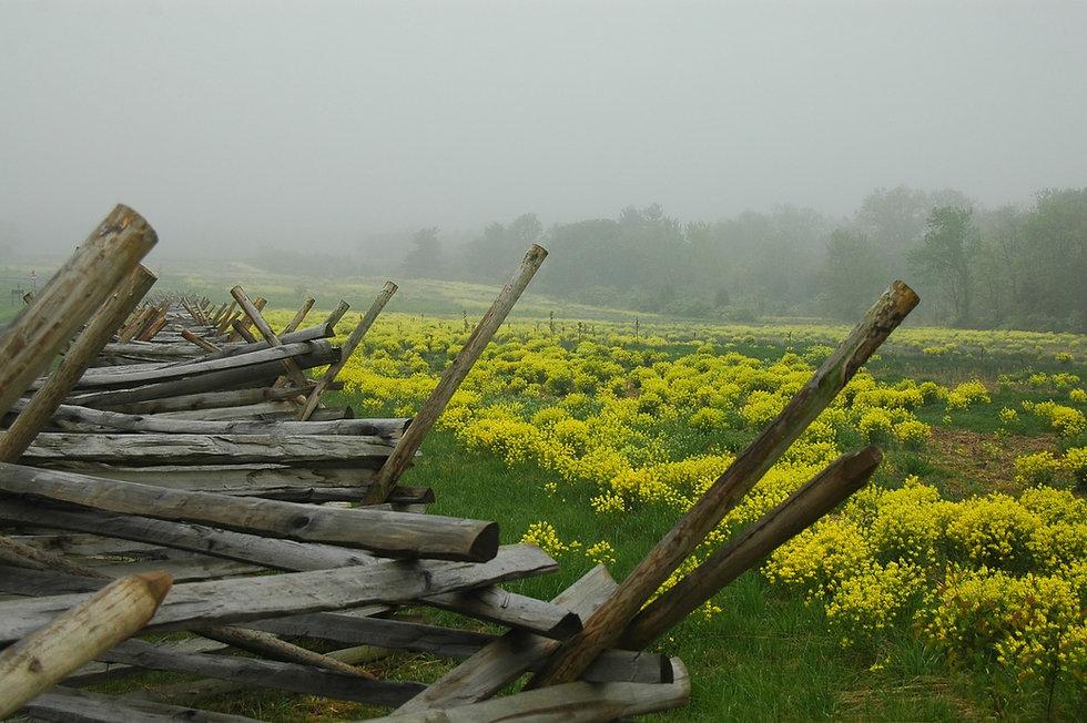 gettysburg-350051_1280.jpg