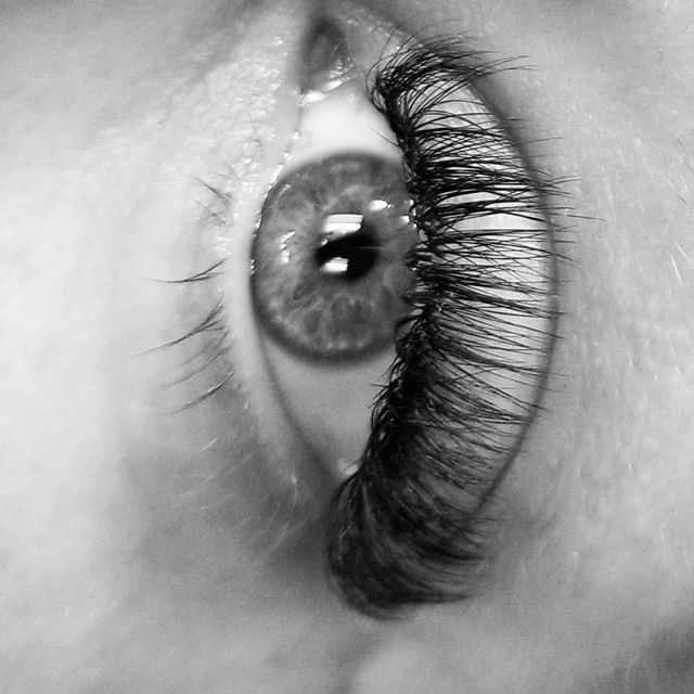 Volume Lashes _D curl, 4-6 D_#eyelashext