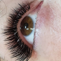Natural B curl_Mega volume _#eyelashexte