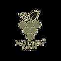 duvin logo.png