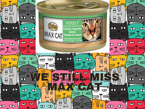 MAX CAT REPLACEMENT UPDATE - No More Wellness