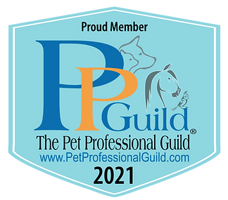 PPG Member Badge 2021_blue with url(1).png