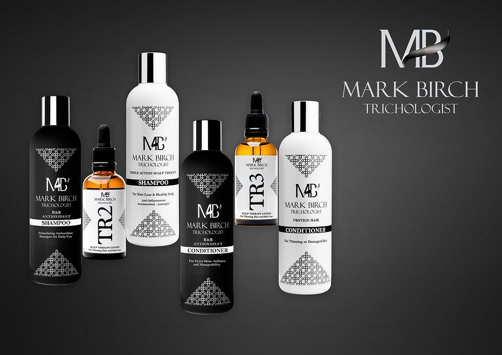 MB products acordion ver 2.jpg