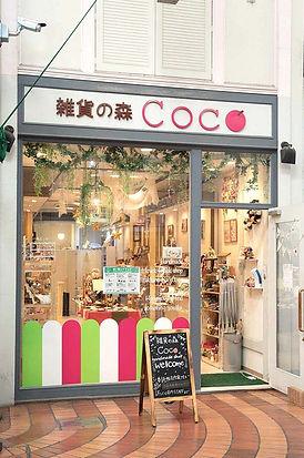 15_coco_11.jpg