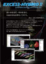 EXCESS-HYBRID2(JPN).jpg