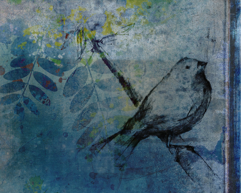 birdontree