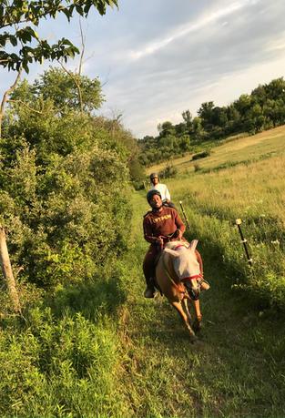 Joe Trail Ride Pasture .jpg