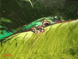 Peeping Frog