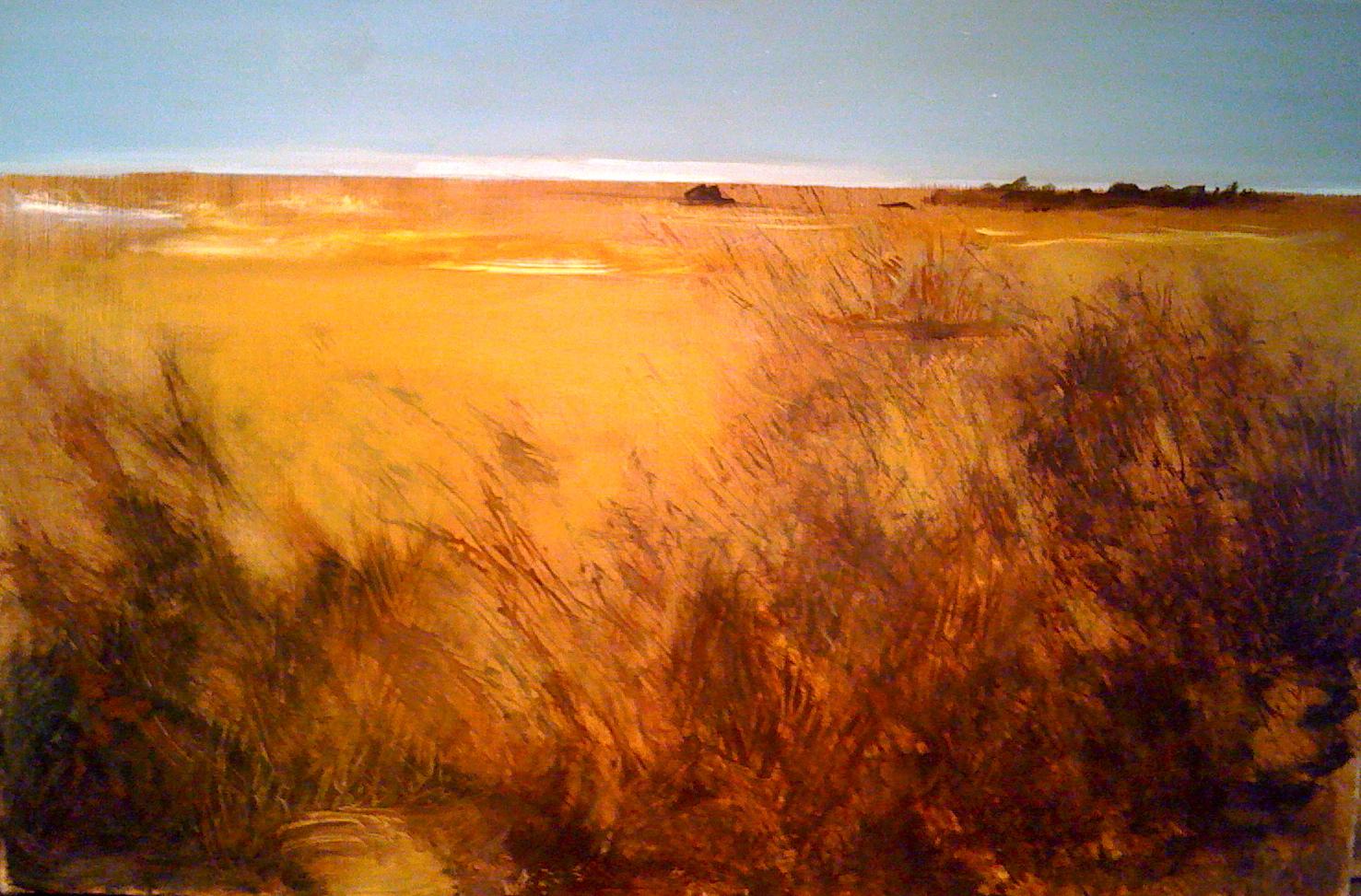 Tinicum Fields