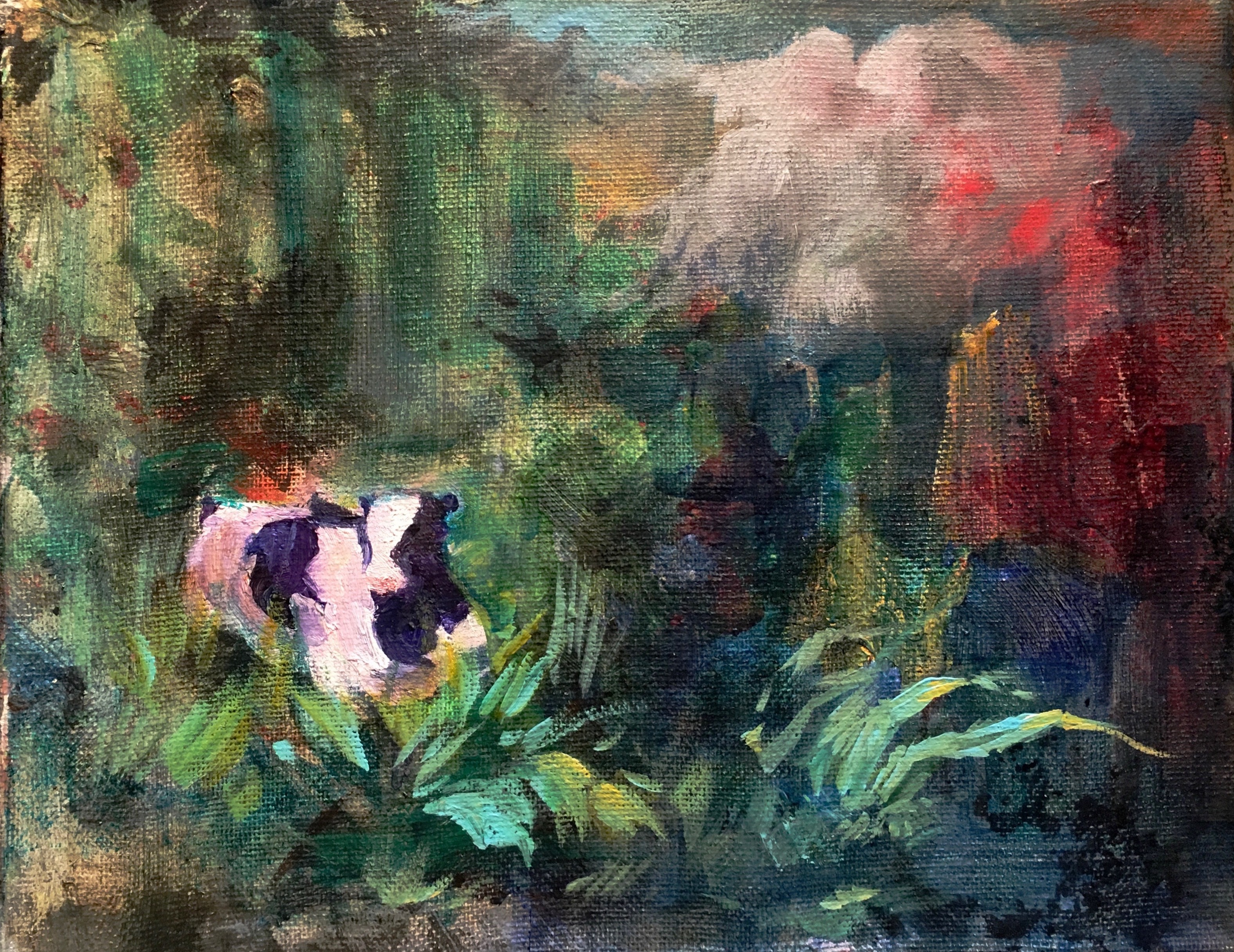Cow in Thicket