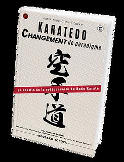 YOKOTO BOOK.png