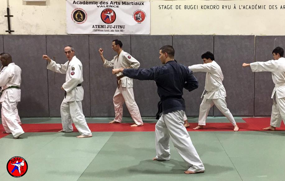 Cours à L'Académie des arts martiaux à Valence