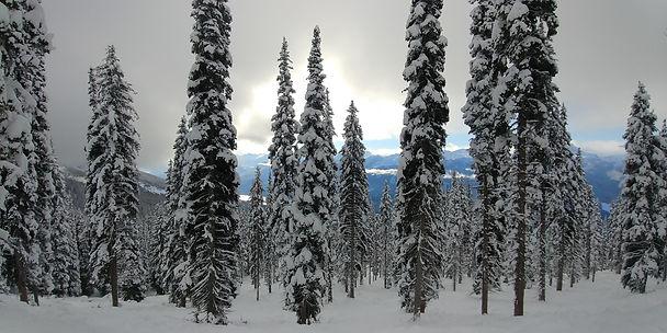 Mountain shot - Revelstoke.jpg