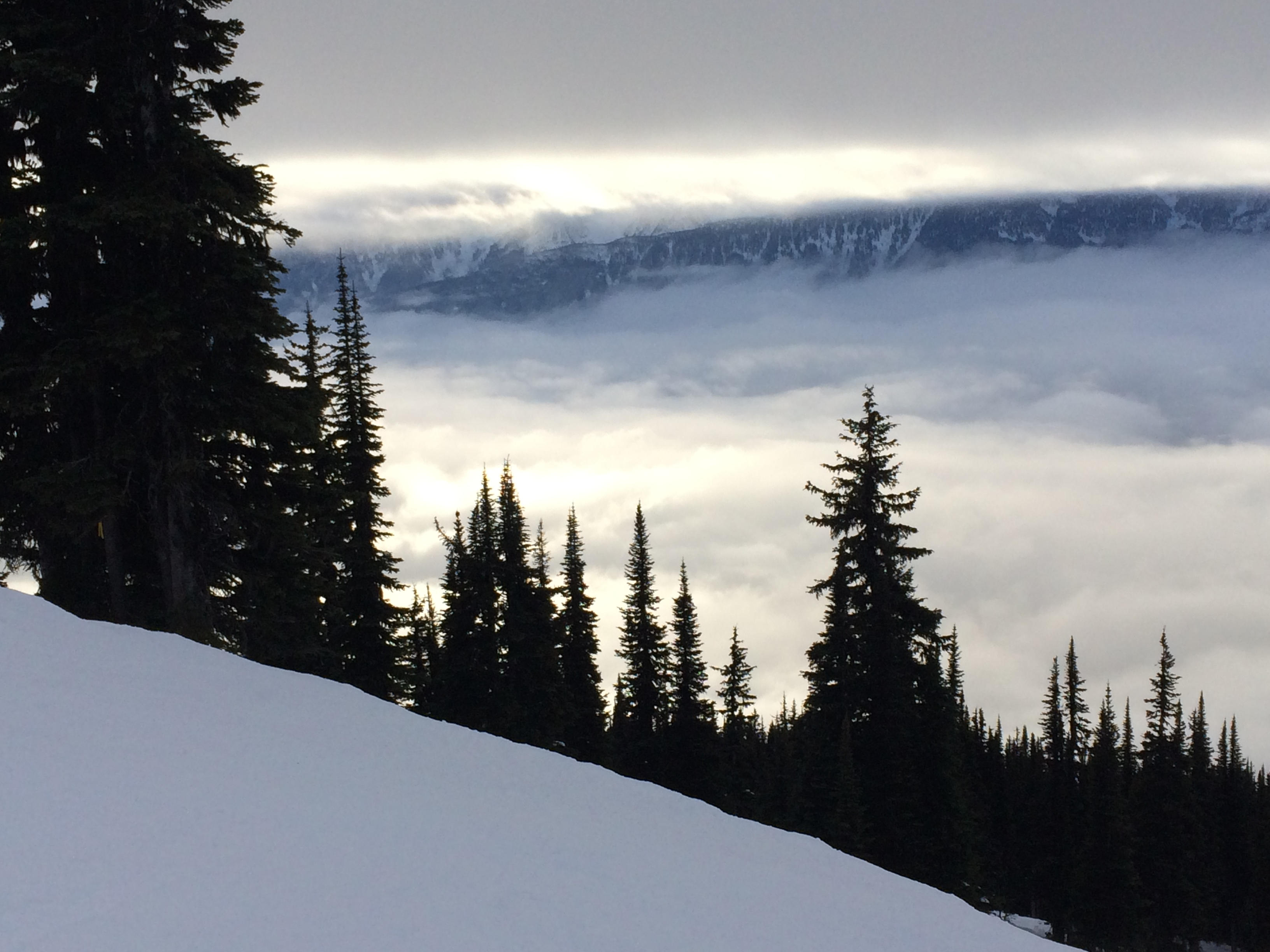 Revelstoke Mountain Resort
