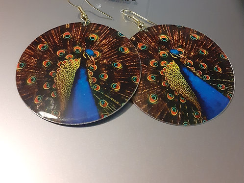 Copper Peacock Bird
