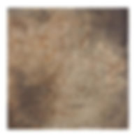 EDINBURGH SNP606094