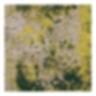 GOLDEN MEMORY TILE SNP606072C