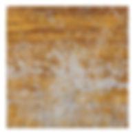 GOLDEN MEMORY TILE SNP606072B