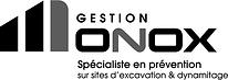 BW_GestionMonox.png