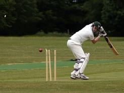 Planning Board to Decide Future Location of Cricket Field