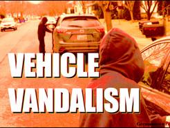 Police Say Nine Cars Damaged by BBs on Germantown Street