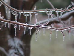 Freezing Rain Forces Delayed Openings