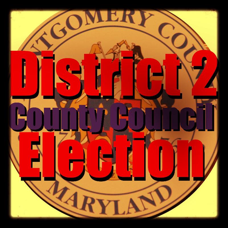 District2ElectionArt_edited.jpg