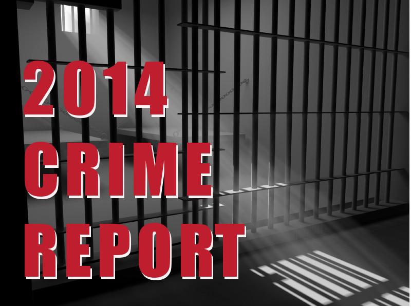 crimereportgraphic.jpg