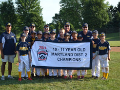 Local Little Leaguers Win District Championship