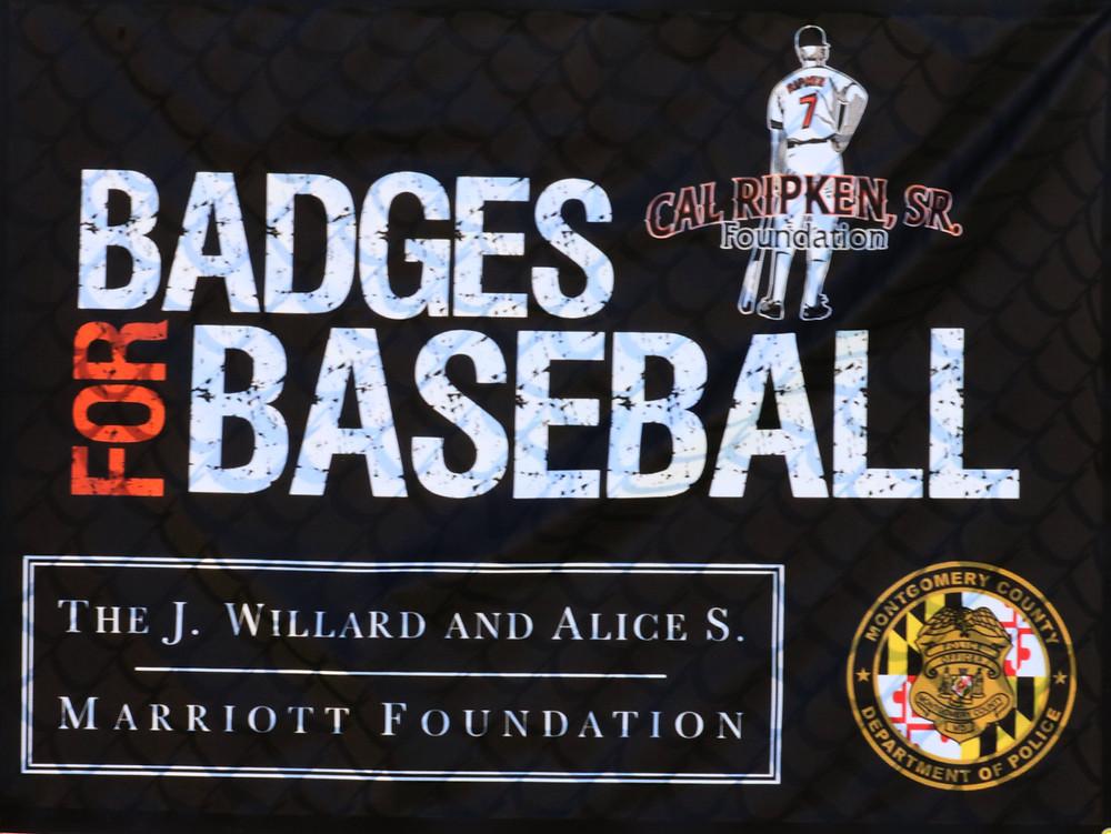 Badges4BaseballLogo.jpg
