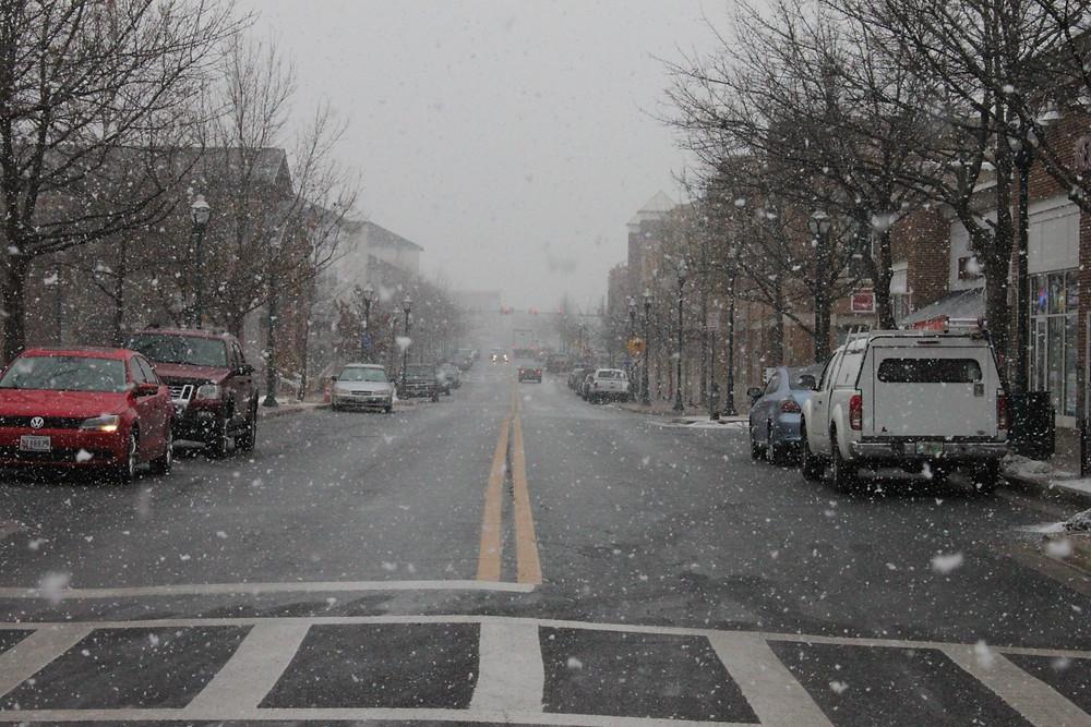 Snow Jan 21-6.JPG