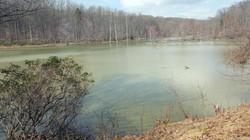 Serene Scene -  Little Seneca Lake