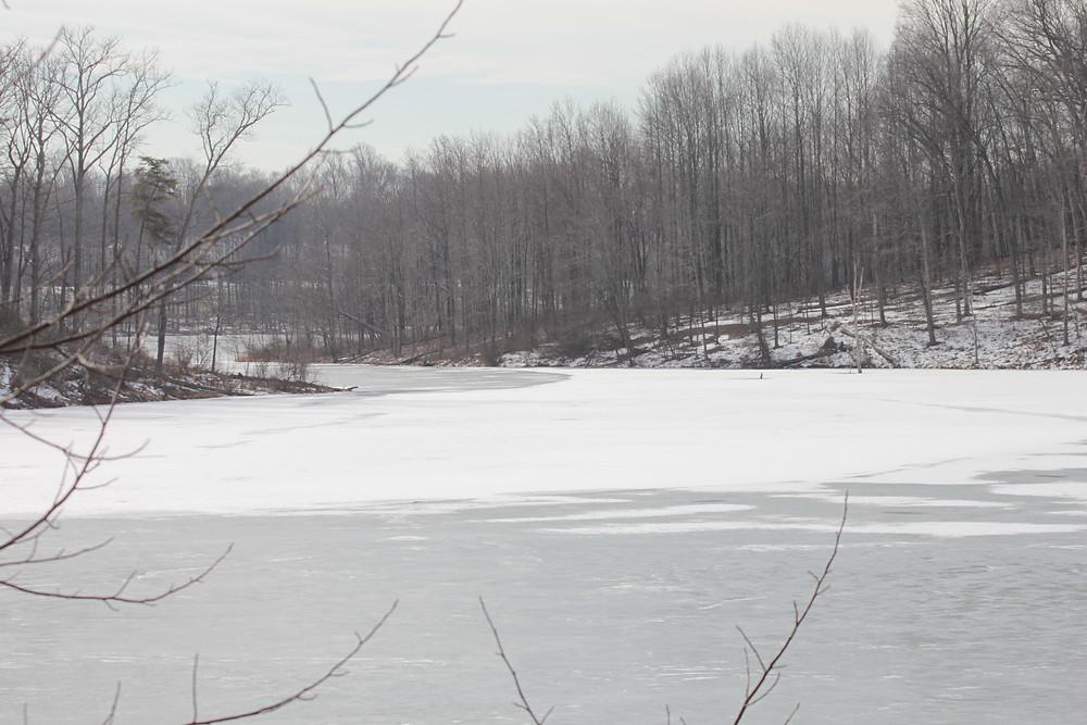 LIttle Seneca Lake.jpg