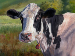 Farm to Gallery Exhibit Celebrates the Farming Heritage and Rural Landscape of Montgomery County's A