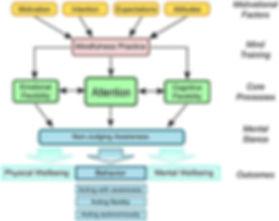 Liverpool Mindfulness Model.jpg