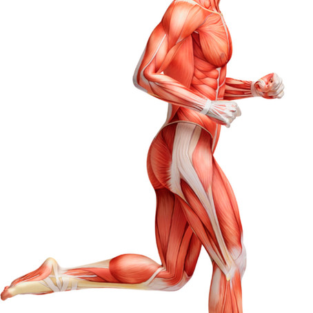 Common Causes of Hypertonic Muscles